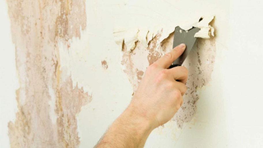 Vì sao cần loại bỏ lớp sơn tường cũ?