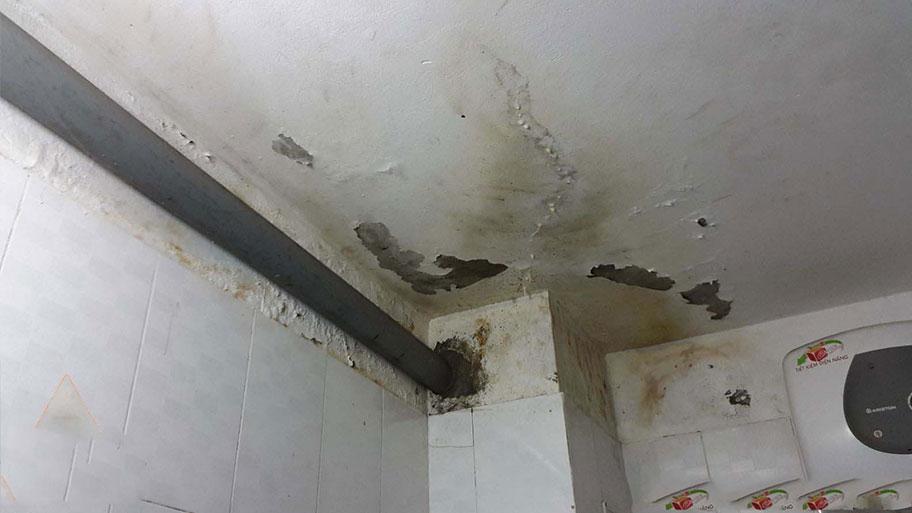Trần nhà vệ sinh bị ẩm dột